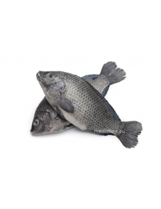 Fresh Tilapia 500g-2 Medium...
