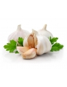 Garlic (1 Bundle)