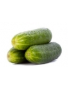 Cucumbers (2 0r 3 pieces)