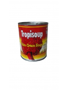Homefoods Tropisoup Palm Cream Soup 800g
